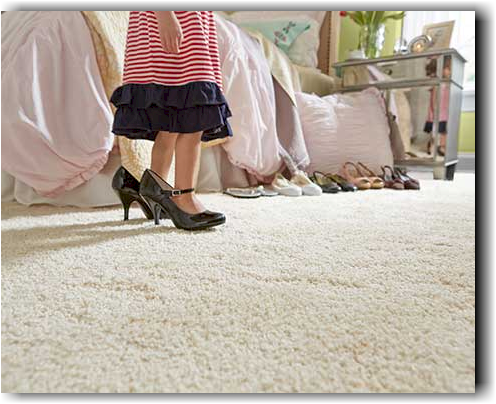 STAINMASTER® TruSoft® carpet